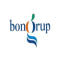 BonGrup